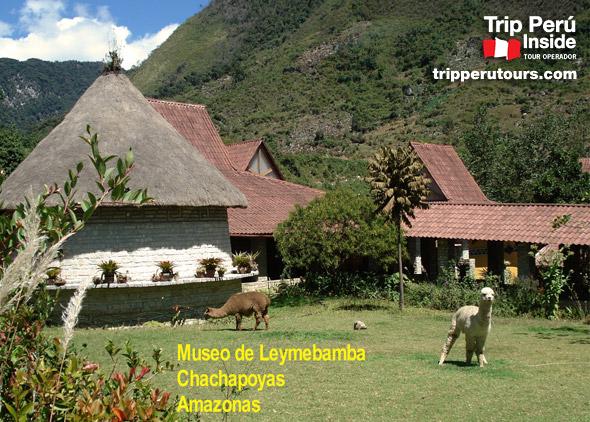 leimebamba-museo
