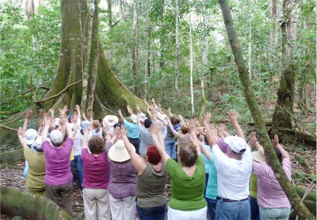 Iquitos Selva de Peru