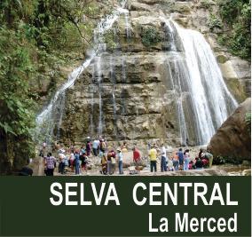 SELVA-CENTRAL