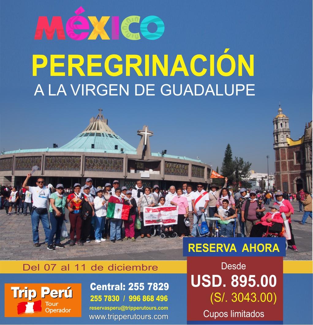 Tour Virgen de Guadalupe