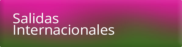 salidas-internacionales