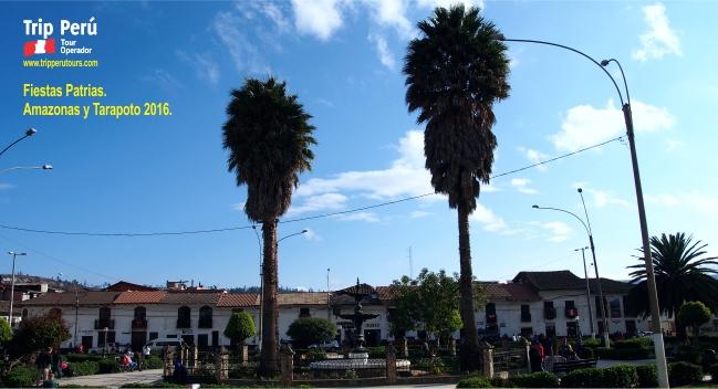 Fiestas Patrias 2016 25