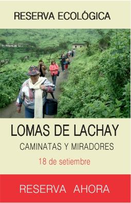 Tour Lomas de Lachay