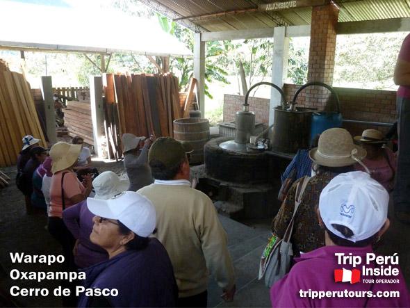 Selva Central Foto Tours