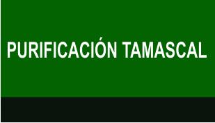 PURIFICACIÓN TAMASCAL