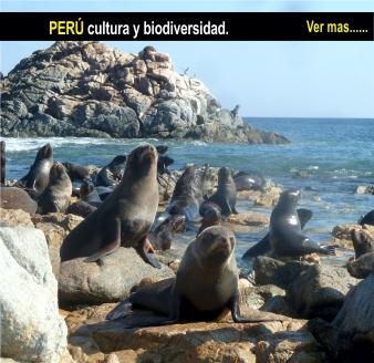 Tour Peru biodiversidad